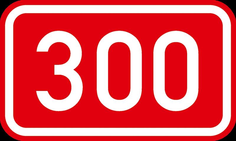 Essener Linke wächst auf über 300 Mitglieder